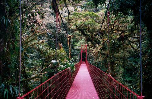 張家界入選世界十大迷人森林