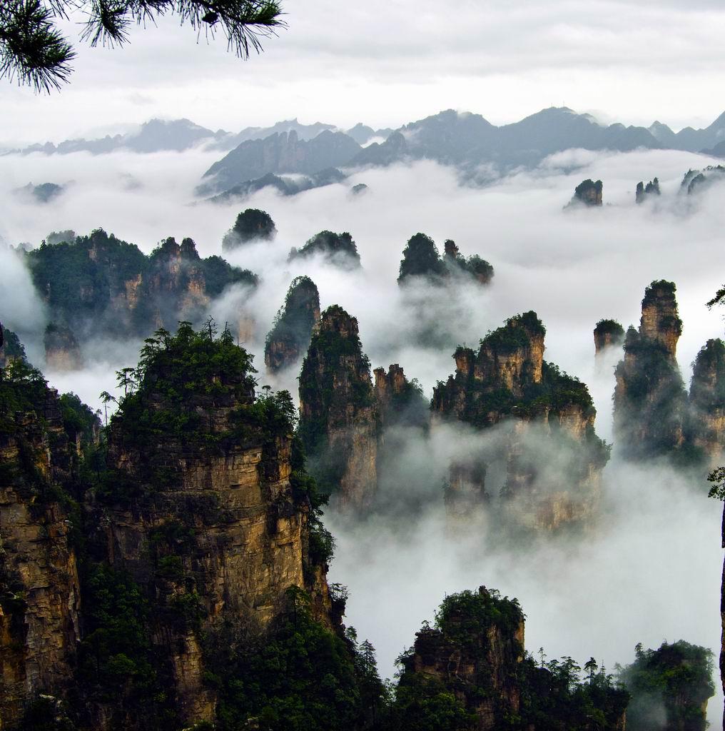 張家界國際森林保護節10月舉行